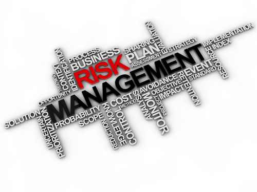 the words risk management